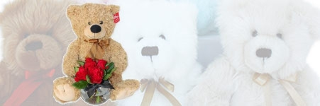 VALENTINE'S DAY TEDDY BEARS & SOFT TOYS