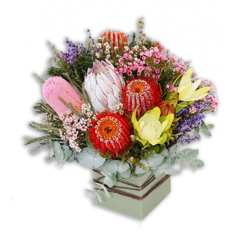 Australian Native Flowers Perth | Native Flowers Perth Delivery