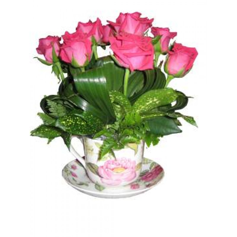 perth roses in a teacup gift perth roses teacup gift