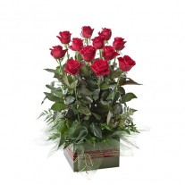 Box Arrangement of 12 Long Stem Red Roses