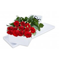 1 Dozen Long Stem Red Roses in Presentation Box