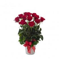 1 Dozen Long Stem Red Roses in Ceramic Vase