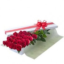2 Dozen Long Stem Red Roses in Presentation Box