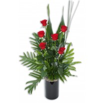 6 Long Stem Red Roses in Ceramic Vase