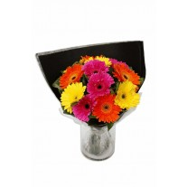 Premium Gerbera Bouquet in Glass Vase