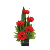 Gerbera Jazz Flower Arrangement
