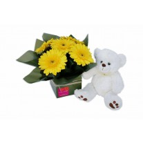 Newborn Baby Flowers & Teddy Bear