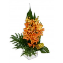 Orchids in Vase Flower Arrangement