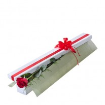 Single Long Stem Red Rose in Presentation Box