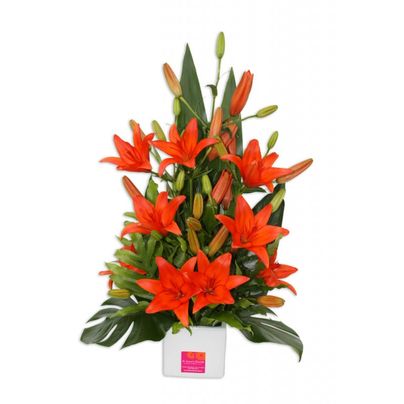 funky-lily-flowers-perth