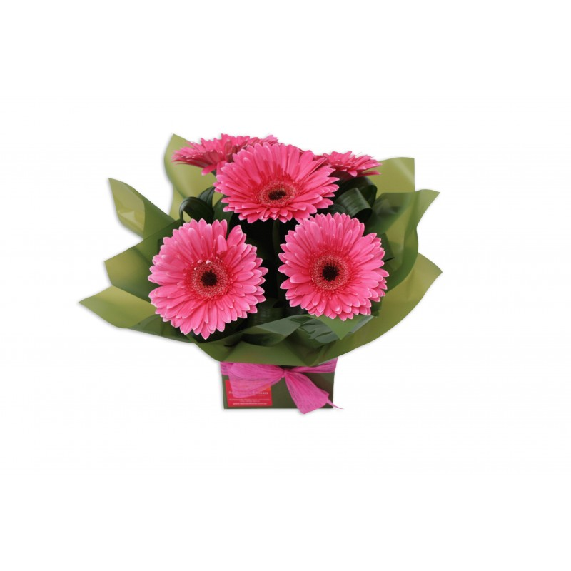 gerbera-flowers-arrangement-perth-1