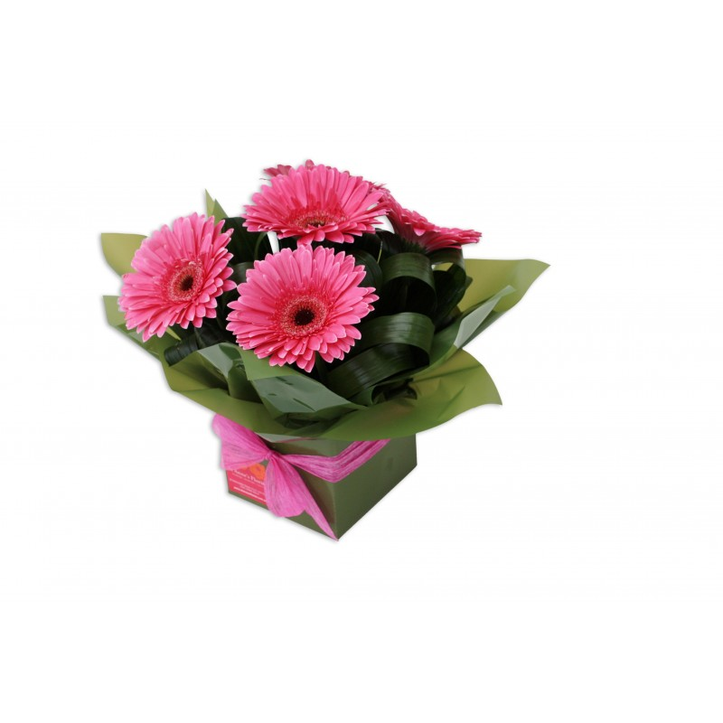 gerbera-flowers-arrangement-perth-2