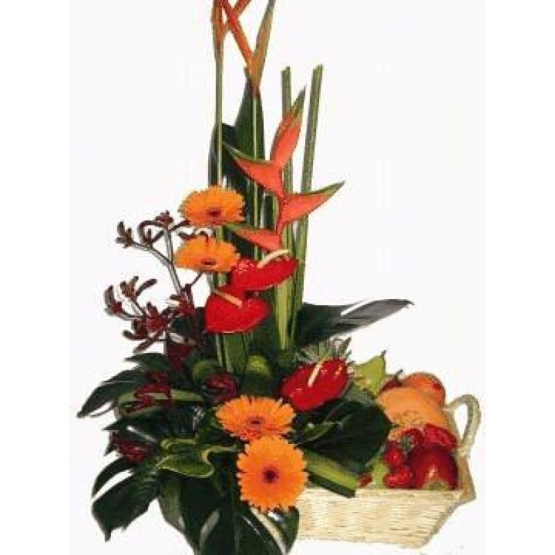 Tropical-Flowers-and-Fruit-perth-2