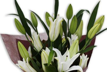 mothers day oriental lilies perth