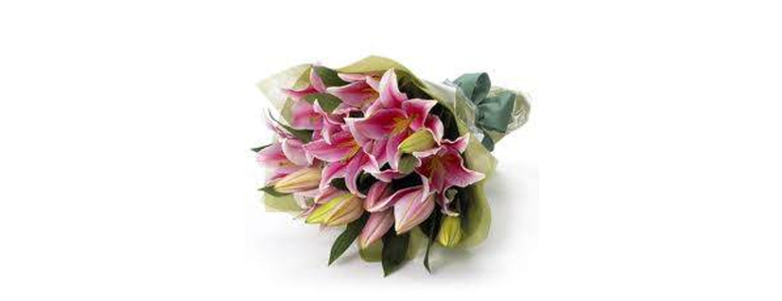 Pink Oriental Lily Bouquet Perth